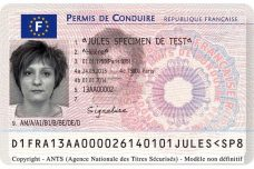France-Drivers-License